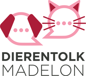 madelonvanrijn.nl